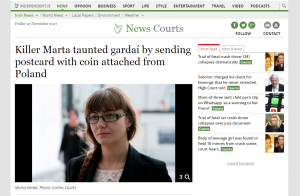 Screen of article on Independent.ie